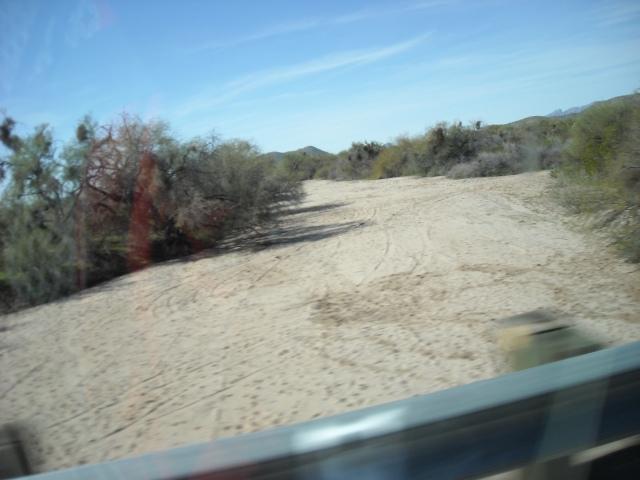 arizona-feb-2009-219