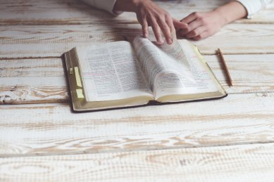 Reading Bible by Kiwihug