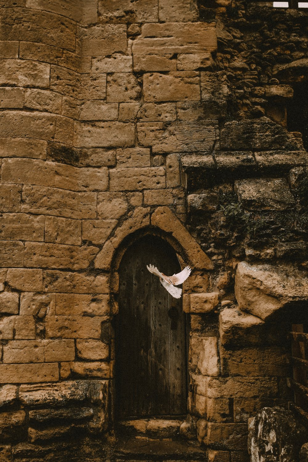 Fortress by rikki-austin-1592571-unsplash.jpg