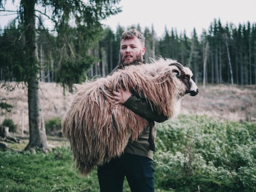 The Shepherd by foyn-590806-unsplash.jpg